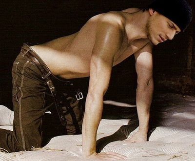 Wentworth Miller vuelve a negar que sea gay